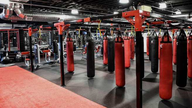 essential_gym-440804a803d0b1a427b814d5a2a3cd27